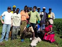 Con cultivadores de té